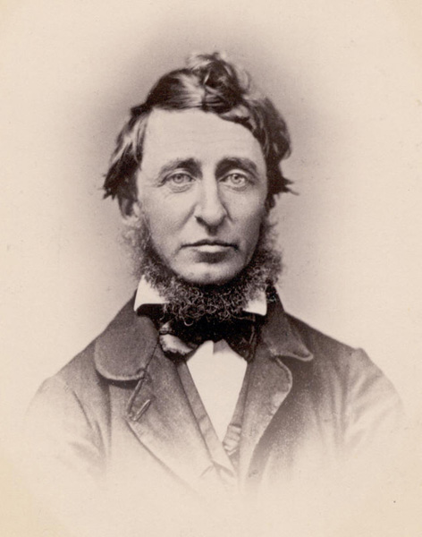 henry david thoreau the life of a great writer Laura dassow walls's definitive biography, henry david thoreau: a life, is an   a stack of books that put him among the world's great writers.